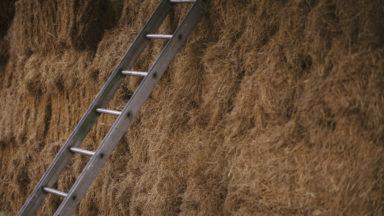 ladder in hay loft